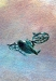 sky-mural-avatar-007