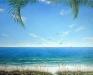 sky-mural-beach-001