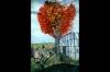 mural-prop-bethabara-09