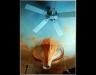 mural-prop-peter-rabbit-2