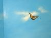 sky-mural-detail-006